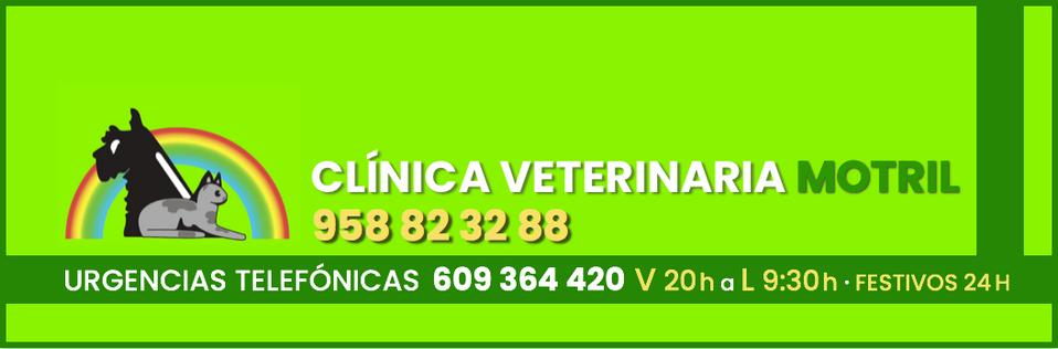 Clínica Veterinaria Motril